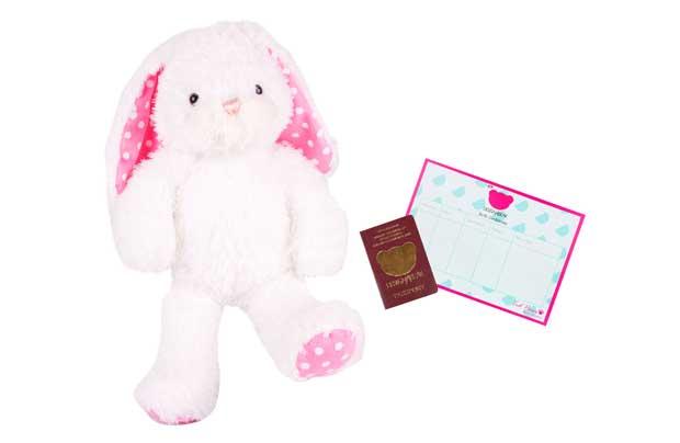 Chad Valley Designabear Pink Bunny